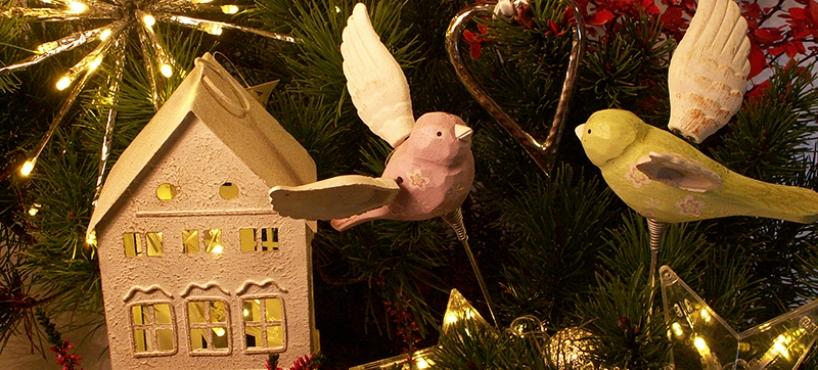 """<a href=""""http://www.twojogrod.com.pl/szukasz-pomyslu/"""">W świątecznym klimacie</a><span></span>"""