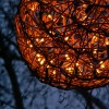 &lt;a href=&quot;http://www.twojogrod.com.pl/ida-swieta/&quot;&gt;W zimowym nastroju&lt;/a&gt;&lt;span&gt;<p>Natura odpoczywa &#8211; ogród cieszy nas światłem</p> &lt;/span&gt;