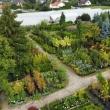 Twój Ogród - zdjęcia z drona